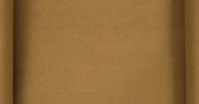 картон