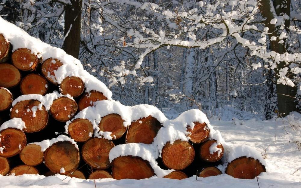 лес, снег, дрова