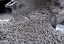 Открываем производство бетона