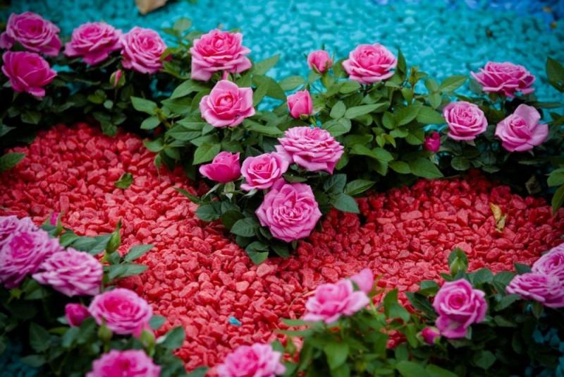 цветной щебень клубма