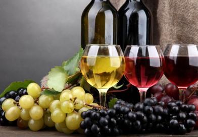 Как стать импортером вина из Грузии