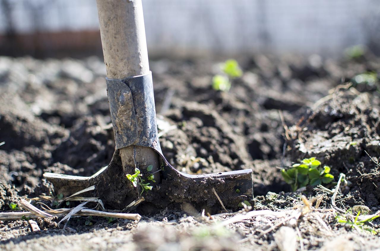Лопата огород