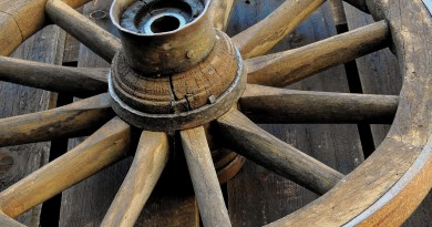 колесо телега