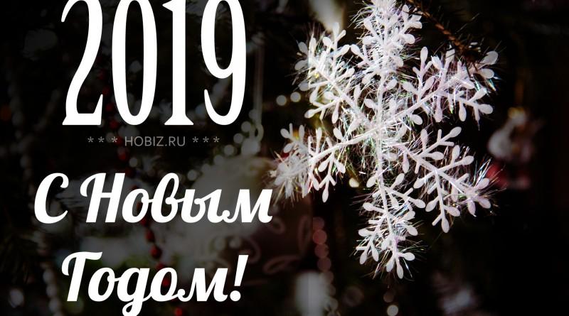 hobiz.2019