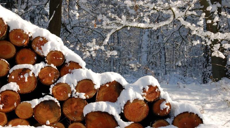 Бизнес план уборка снега тема бизнес идея