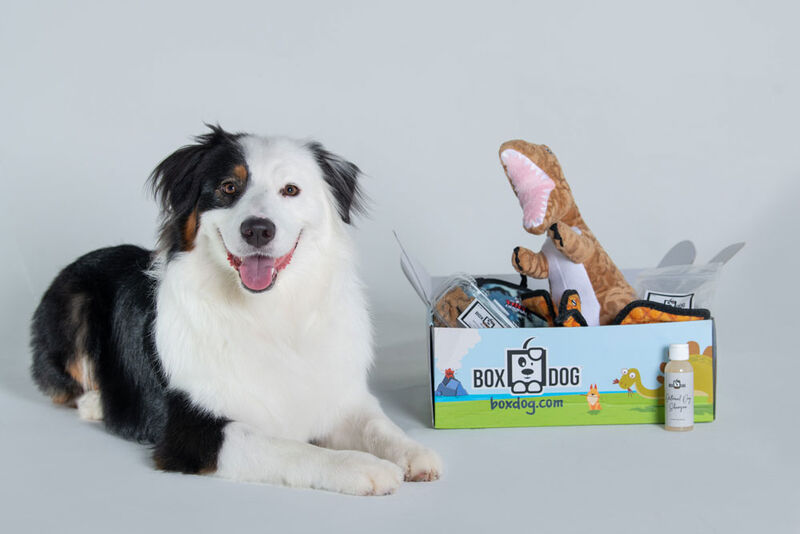 dog-subscription-boxes